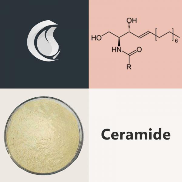 Ceramides Powder