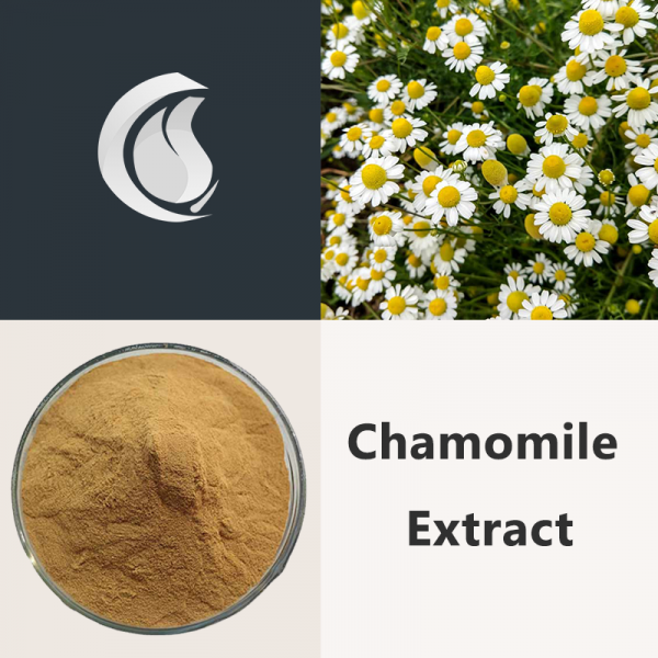 Chamomile Extract Powder