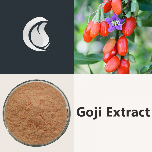 Goji Extract Powder