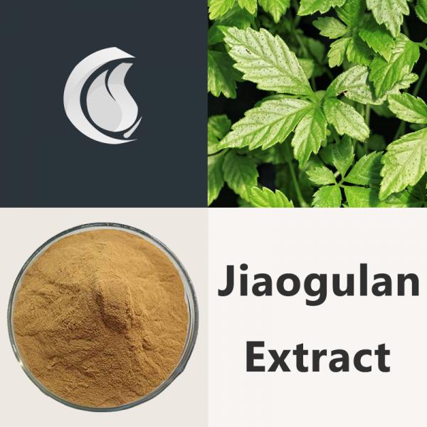 Jiaogulan Extract Powder