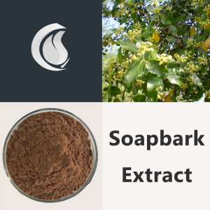 Soapbark Extract Powder
