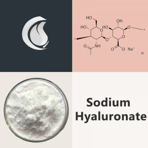 Sodium Hyaluronate Powder