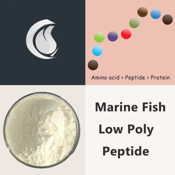 Marine Fish Low Poly Peptide Powder