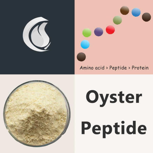 Oyster Peptide Powder