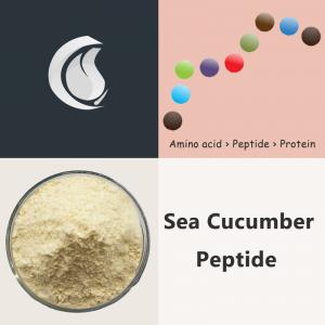 Sea Cucumber Peptide Powder